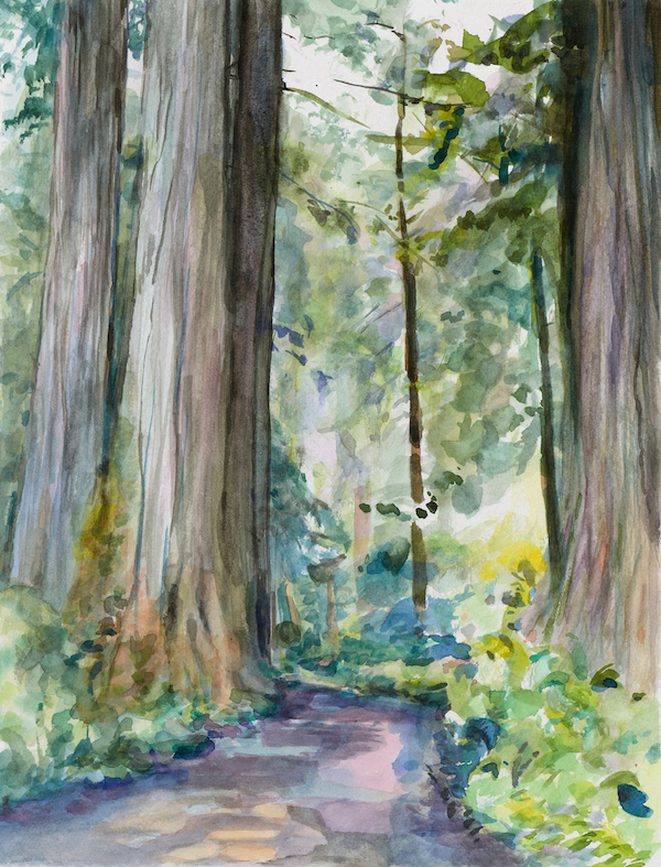 Through the Woods watercolor